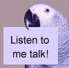 Listen to me talk